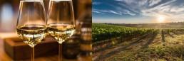 surrey-wine-gift-ideas
