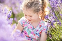 Family photography in the lavender fields surrey
