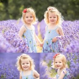 twins lavender field