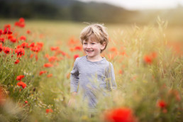 Surrey poppy field photography